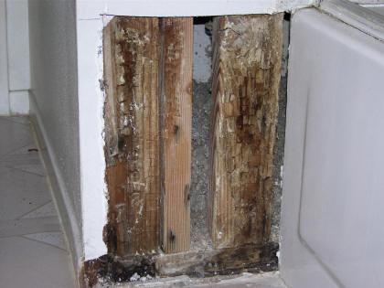 Fuktskador som inträffat på en vägg där fuktmätning ej utförts i tid